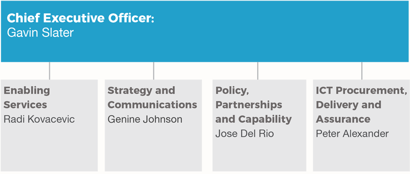 Organisation structure of the DTA executive as at June 30, 2017. Chief Executive Officer Gavin Slater, Enabling Services Radi Kovacevic, Stretegy and Communications Genine Johnson, Policy, Partnerships and Capability Jose del Rio, ICT Procurement, Delivery and Assurance Peter Alexander