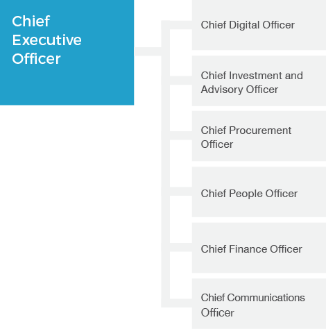 Organisation chart for the Digital Transformation Agency as at 30 June 2018. It shows the Chief Executive Officer at top, with the positions Chief Digital Officer, Chief Investment and Advisory Officer, Chief Procurement Officer, Chief People Officer, Chief Finance Officer and Chief Communications Officer.