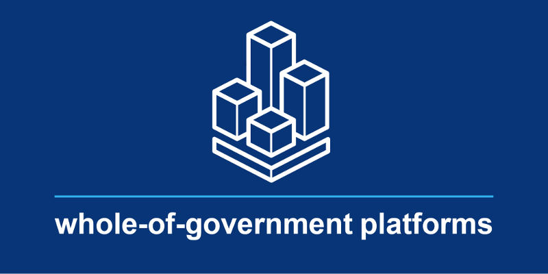 A tile with an outline of building blocks and the text whole-of-government platforms.